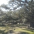Hopkinsville RV Park
