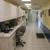 Bray, Alexandra, VMD, CVA - Bayside Animal Medical Center