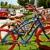 Boca Bike Shop