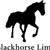 Blackhorse Limousines