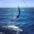 Top Charter Fishing Network, Inc.