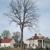 Mount Vernon-George Washington's Estate & Gardens