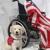 Patriot Service Dogs
