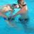 MARGOA RELAXATION aquatic bodywork