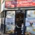 Brookline Grooming & Pet Supplies