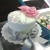 Sweetherapy Gourmet Cupcakes
