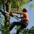 J & S Tree Service