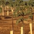 Agri-Valley Irrigation