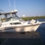 Brag and release fishing charters