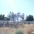Elmwood Correctional Complex