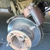 Gilroy RV Service & Repair