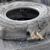 Cooper Tire & Rubber Co