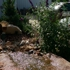 Bedrock Landscaping Materials