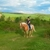 Fox Ridge Equestrian Center