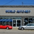 World Auto Net Inc