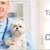 Shenandoah Valley Regional Veterinary Emergency Services