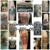 Dreamworld Tattoo and Body Piercing