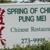 Spring of China
