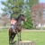 Katy Nichoalds Horsemanship