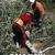 Timberfalls Tree Service