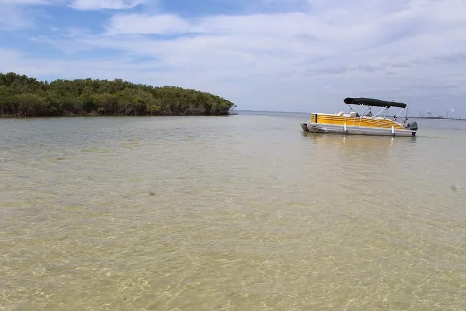 Mellow Mangrove Charters, Homosassa FL