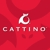 Cattino Cat Scratchers & Cat Toys