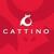 Cattino LLC Cat Scratchers & Cat Toys