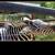 Smoky Mountain Deer Farm And Exotic Petting Zoo