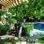 Mow & Clip Lawn Care
