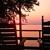 Cozy Moose Lakeside Cabin Rentals