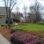 Cuchiara's Landscape Management
