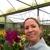 Orchids Flower Shop