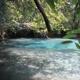 Econfina Creek Canoe Livery