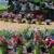 Garden Gin & Landscaping