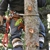 Cornerstone Tree Service