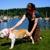 Timber Tails, LLC  Mobile Pet Massage