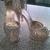 Cove Shoe Repair Boca Raton
