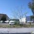 Fremont Swim School - CLOSED