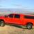 T-Rex Truck Stuff