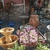 The Potting Shed Garden & Gifts