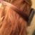 Blown Away Hair Styles