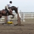 Legacy Farm - Specializing in Hunters Equitation & Ponies