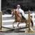 Dayenu Equestrian