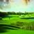 Barefoot Resort & Golf