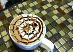 Morning Glory Farm Fresh Cafe - Lafayette, CO