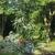 Harper Hill Tree Service