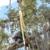 Pete & Ron's Tree Svc Inc