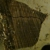 Tarrillion's Firewood & Mulch