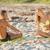 iTAN Sun Spray Spa - Clinton Keith