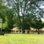 Arbor Hills Veterinary Clinic